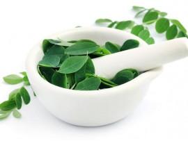 Ceai de plante Moringa
