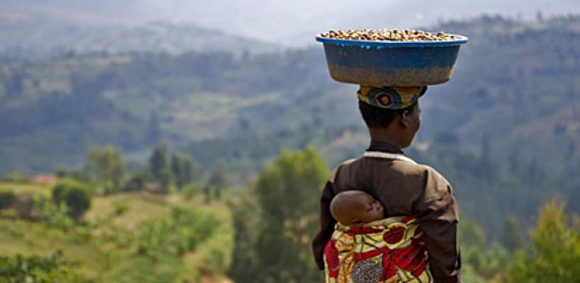 Cafeaua boabe africana – legende si istoric