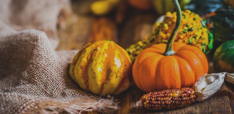 Tot ce trebuie sa stii despre fructul vedeta al sezonului - dovleacul
