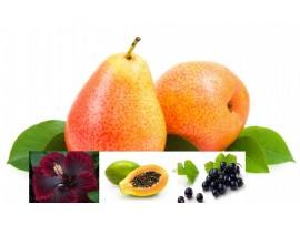 Ceai de fructe Andruschka