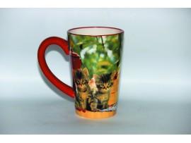 Cana Inalta Colectia Pisici Rosii