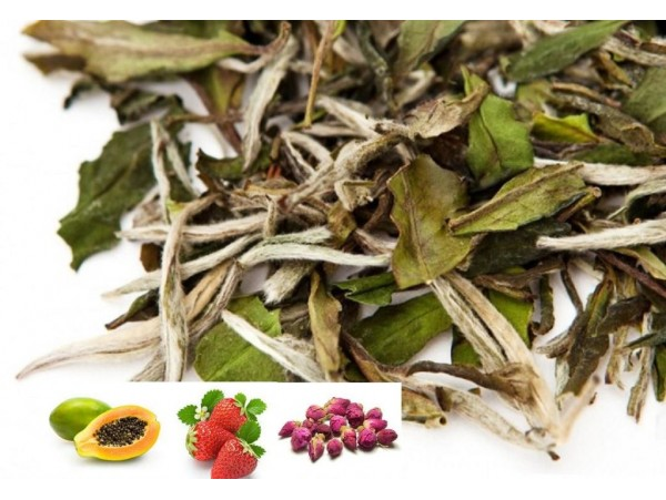 Ceai Alb Exotic Tea
