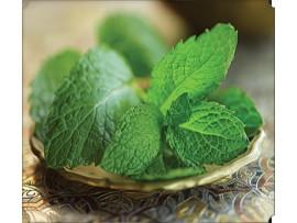 Ceai de plante Moroccan Mint