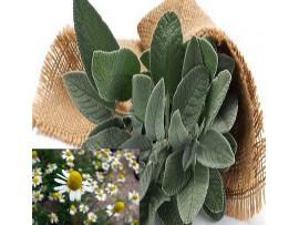 Ceai de plante Mountain Herbal