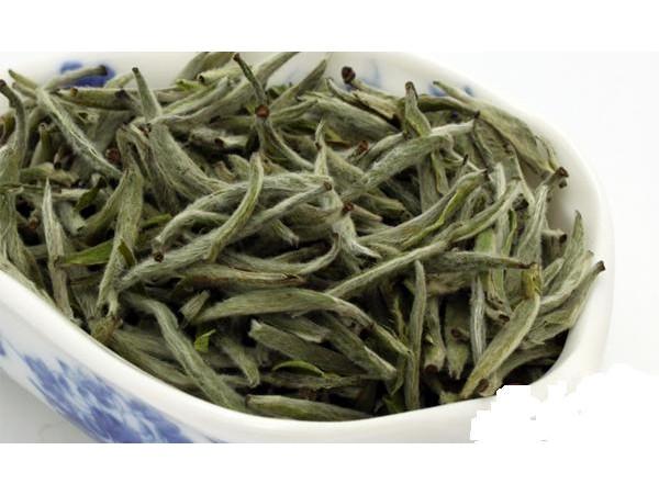 Ceai Alb Pine Needles