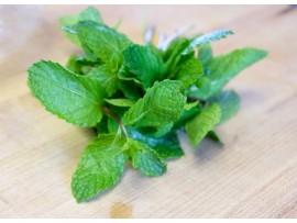 Ceai de plante Peppermint