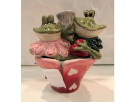Solnita si Pipernita Colectia Frogs