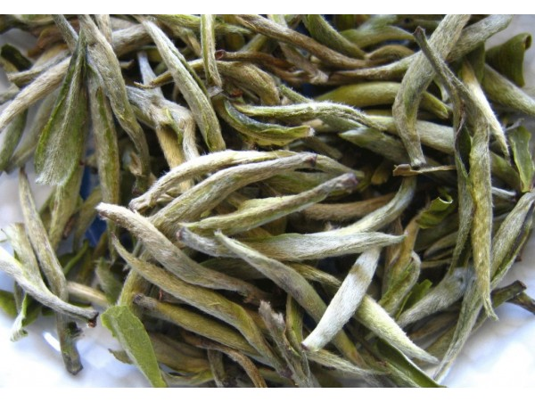 Ceai Alb Yin Shan Yin Zhen