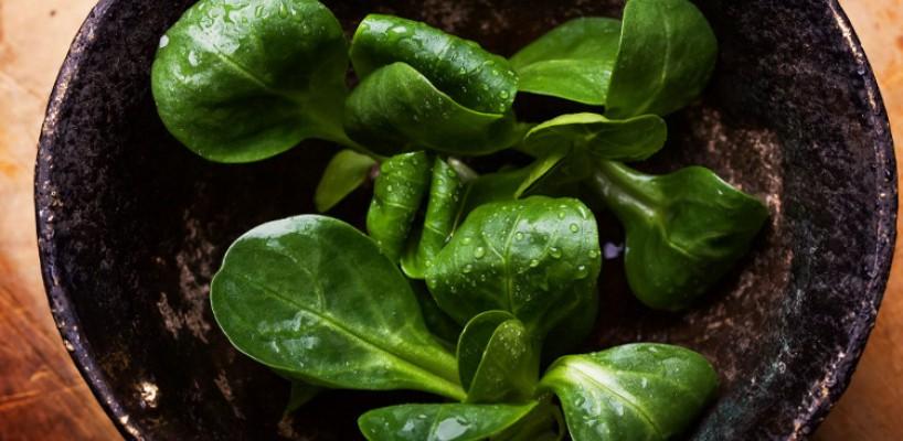 Sănătate într-o ceașcă: ceaiurile cu legume de la Livada cu ceai