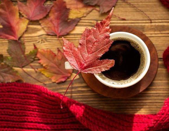 Ceasca cu ccafea si un fular rosu langa frunze uscate