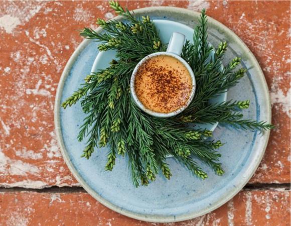 Cafea varsata si o ceasca de cafea in natura