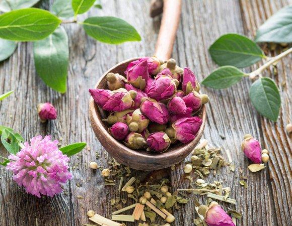 Borcan cu miere si plante pentru ceai